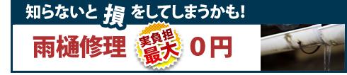 雨樋補修実質0円
